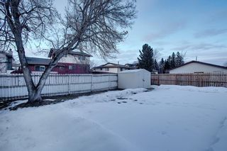 Photo 50: 328 Templeton Circle NE in Calgary: Temple Detached for sale : MLS®# A1074791
