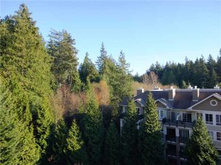 Photo 12: 706 5615 HAMPTON Place in Vancouver: University VW Condo for sale (Vancouver West)  : MLS®# V1036244