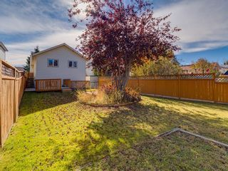 Photo 29: 13 SHAWGLEN Court SW in Calgary: Shawnessy House for sale : MLS®# C4142331