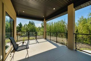 Photo 46: 1 Carriage Lane: Rural Strathcona County House for sale : MLS®# E4224629