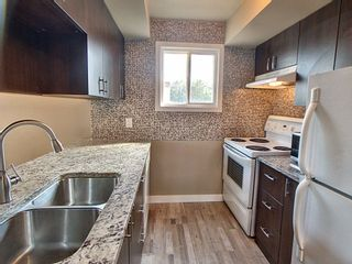 Photo 8: 257 Lancaster Terrace in Edmonton: Zone 27 Townhouse for sale : MLS®# E4256171