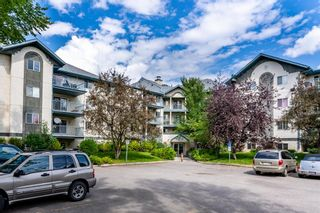 Main Photo: 312 21 Dover Point SE in Calgary: Dover Apartment for sale : MLS®# A1141286