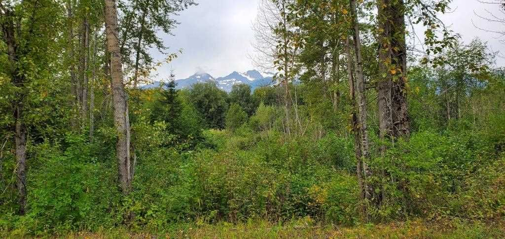 Main Photo: LOT A 37 Highway: Kitwanga Land for sale (Smithers And Area (Zone 54))  : MLS®# R2506362