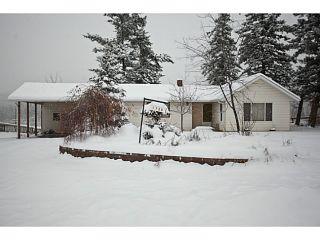 Photo 1: 1730 DOUGLAS Road in Williams Lake: Williams Lake - Rural North House for sale (Williams Lake (Zone 27))  : MLS®# N241547