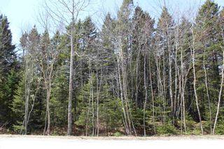 Photo 4: Lot 87 Otter Point Road in East Chester: 405-Lunenburg County Vacant Land for sale (South Shore)  : MLS®# 202109366