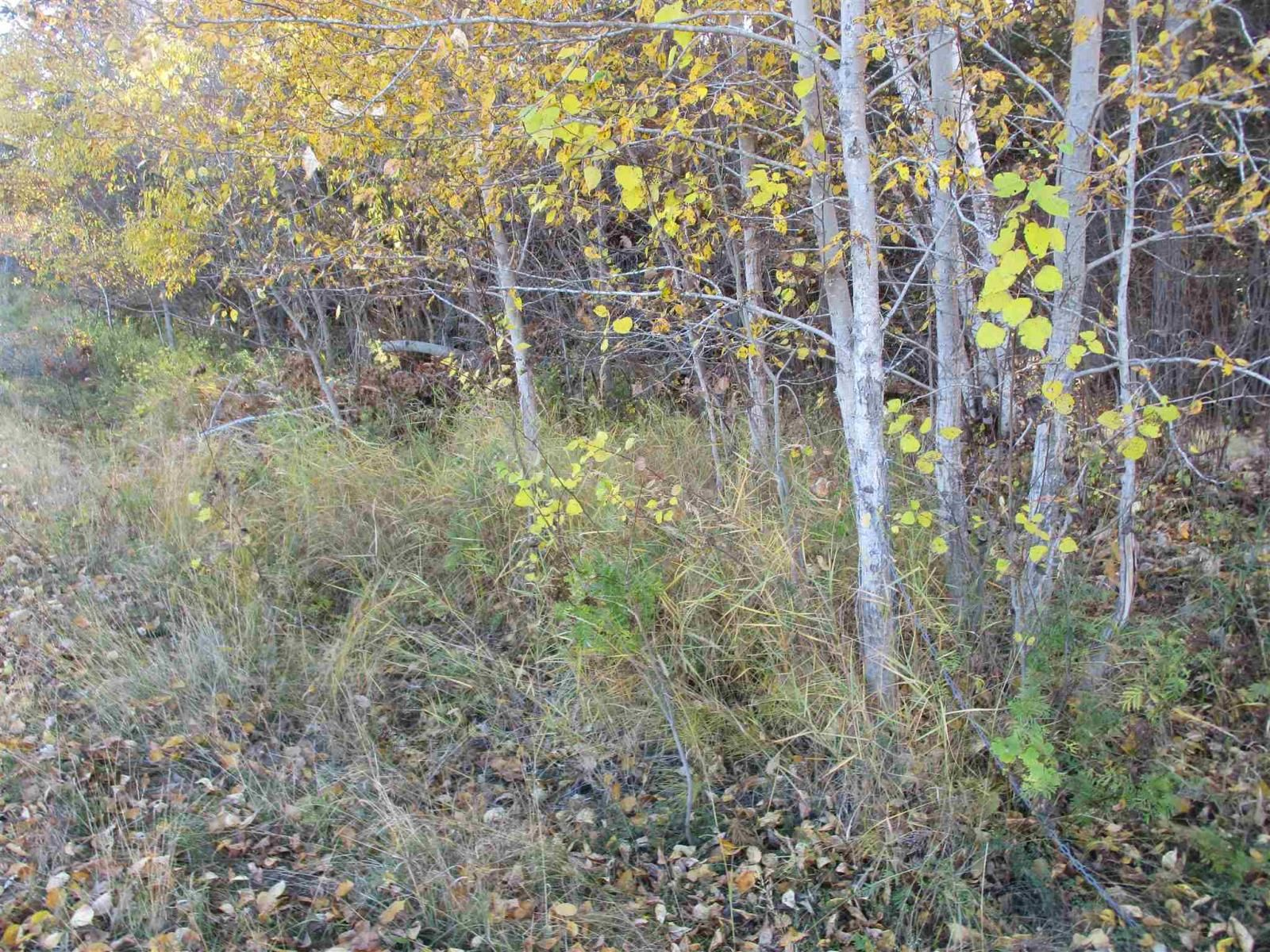 Main Photo: Lot 157-159 Third Avenue South in Kenora: Vacant Land for sale : MLS®# TB202564