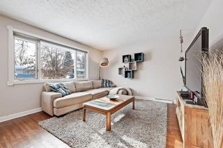 Photo 4: 710 53 Avenue SW in Calgary: Windsor Park Semi Detached for sale : MLS®# A1067398