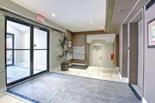 Photo 35: 303 9131 99 Street in Edmonton: Zone 15 Condo for sale : MLS®# E4238517