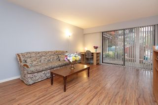 Photo 3: 101 1870 McKenzie Ave in : SE Lambrick Park Condo for sale (Saanich East)  : MLS®# 864072