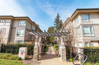 """Photo 1: 9 3211 NOEL Drive in Burnaby: Sullivan Heights Townhouse for sale in """"Cameron"""" (Burnaby North)  : MLS®# R2553021"""