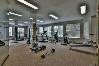 Photo 19: 212 15130 108 Avenue in Surrey: Bolivar Heights Condo for sale (North Surrey)  : MLS®# R2162004