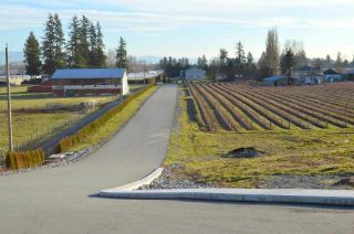 Photo 7: 30169 MARSHALL ROAD in Abbotsford: Abbotsford West Land for sale : MLS®# R2000064