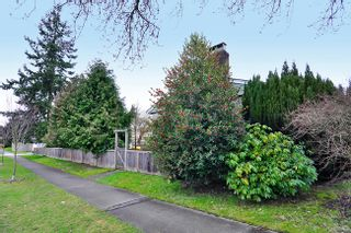 Photo 16: 3108 W 16TH Avenue in Vancouver: Arbutus House for sale (Vancouver West)  : MLS®# V884638