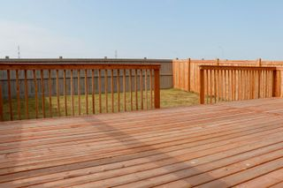 Photo 47: 3359 13 Avenue in Edmonton: Zone 30 House for sale : MLS®# E4264307