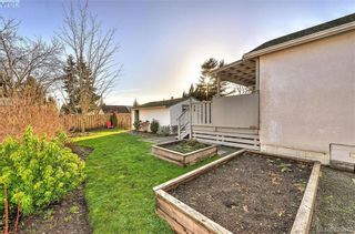 Photo 16: 569 Hurst Ave in VICTORIA: SW Glanford House for sale (Saanich West)  : MLS®# 832507
