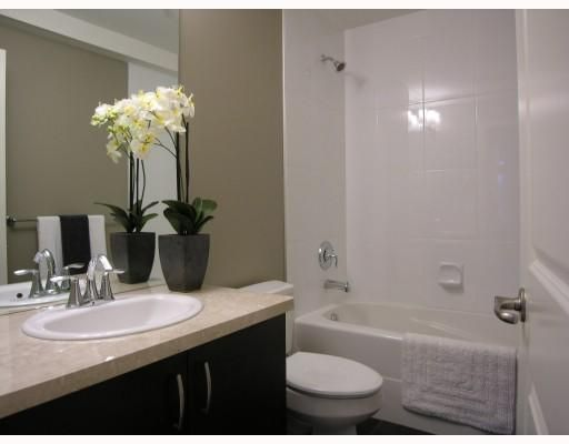 Photo 9: Photos: 2856 SPRUCE Street in Vancouver: Fairview VW Townhouse for sale (Vancouver West)  : MLS®# V680140