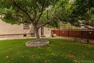 Photo 23: SAN DIEGO House for sale : 4 bedrooms : 3505 Wilson Avenue