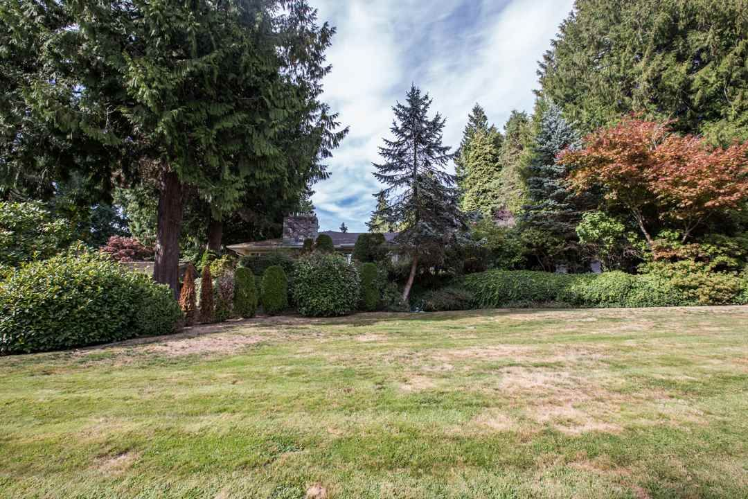 """Photo 6: Photos: 3521 W 47TH Avenue in Vancouver: Southlands House for sale in """"SOUTHLANDS"""" (Vancouver West)  : MLS®# R2005508"""