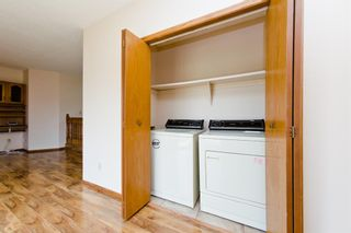 Photo 16: 45 Martinview Crescent NE in Calgary: Martindale Detached for sale : MLS®# A1112618