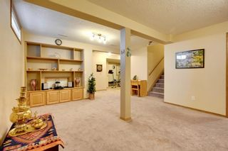 Photo 34: 63 Hampstead Terrace NW in Calgary: Hamptons Detached for sale : MLS®# A1050804