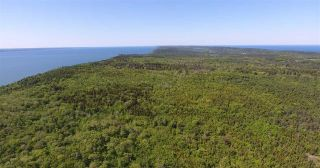 Photo 4: LOT Highway 217 in Centreville: 401-Digby County Vacant Land for sale (Annapolis Valley)  : MLS®# 202012827