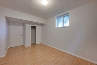 Photo 28: 12123 61 Street NW in Edmonton: House for sale : MLS®# E4166111