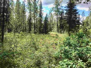 Photo 1: LOT 10 ISLAND PARK Drive in Prince George: Miworth Land for sale (PG Rural West (Zone 77))  : MLS®# R2388123
