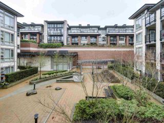 """Photo 14: 225 738 E 29TH Avenue in Vancouver: Fraser VE Condo for sale in """"CENTURY"""" (Vancouver East)  : MLS®# R2146306"""