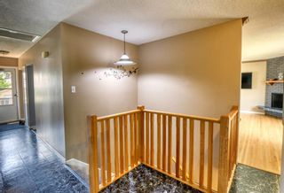 Photo 7: 3231 52 Avenue NW in Calgary: Brentwood Detached for sale : MLS®# A1128463