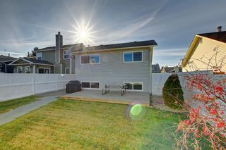 Photo 20: 63 WOODBOROUGH Crescent SW in Calgary: Woodbine Detached for sale : MLS®# C4275508