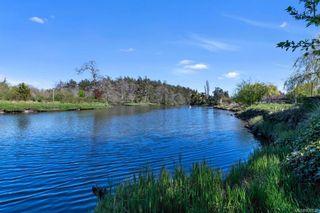 Photo 49: 734 Newbury St in Saanich: SW Gorge House for sale (Saanich West)  : MLS®# 837827