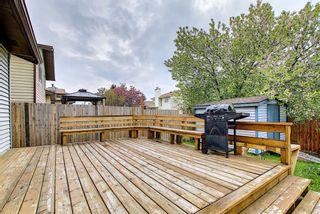 Photo 41: 23 Castlefall Way NE in Calgary: Castleridge Detached for sale : MLS®# A1141276