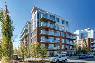 Main Photo: 212 63 Inglewood Park SE in Calgary: Inglewood Apartment for sale : MLS®# A1154631