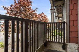 Photo 14: 101 19830 56 AVENUE in Langley: Langley City Condo for sale : MLS®# R2576558