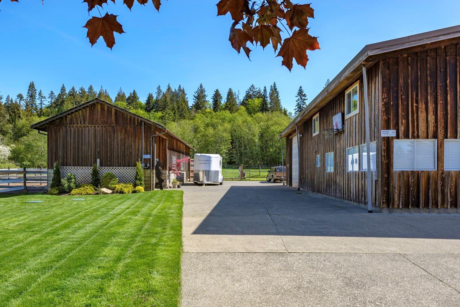 Photo 29: Photos: Vancouver Island Horse Property