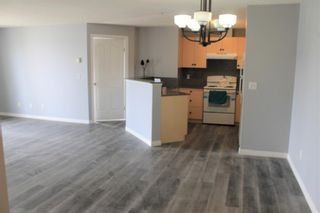 Photo 5: 2216 10 Prestwick Bay SE in Calgary: McKenzie Towne Apartment for sale : MLS®# A1101175