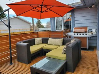 Photo 39: 95 Ferncliff Crescent SE in Calgary: Fairview Detached for sale : MLS®# A1064499