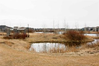 Photo 6: 1265 STARLING Drive in Edmonton: Zone 59 House Half Duplex for sale : MLS®# E4236287