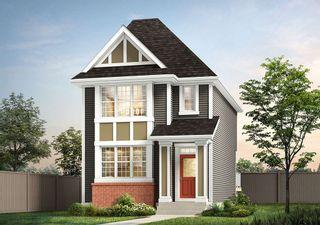 Photo 8: 22512 80 Avenue in Edmonton: Zone 58 House for sale : MLS®# E4226392