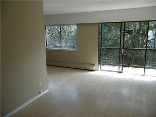 "Photo 2: 307 214 E 15TH Street in North Vancouver: Central Lonsdale Condo for sale in ""HACIENDA"" : MLS®# V826672"