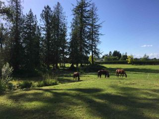 Photo 29: 558 248 Street in Langley: Otter District Agri-Business for sale : MLS®# C8034821