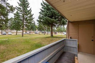 Photo 40:  in Edmonton: Zone 35 Condo for sale : MLS®# E4257107