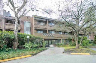 Photo 1: 240 7451 MINORU BOULEVARD in Richmond: Brighouse South Condo for sale : MLS®# R2537751
