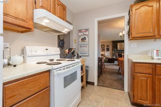 Photo 14: 4389 Columbia Dr in VICTORIA: SE Gordon Head House for sale (Saanich East)  : MLS®# 813897