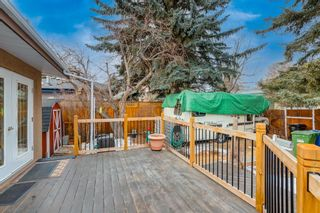 Photo 34: 28 Kelvin Place SW in Calgary: Kingsland Detached for sale : MLS®# A1079223