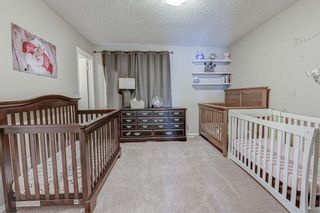 Photo 19: 133 ELGIN MEADOWS View SE in Calgary: McKenzie Towne Semi Detached for sale : MLS®# A1018982