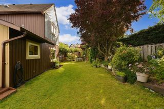 Photo 40: 7826 Wallace Dr in Central Saanich: CS Saanichton House for sale : MLS®# 878403