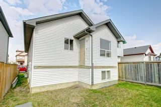Photo 27: 288 SADDLEMEAD RD NE in Calgary: Saddle Ridge House for sale : MLS®# C4201588