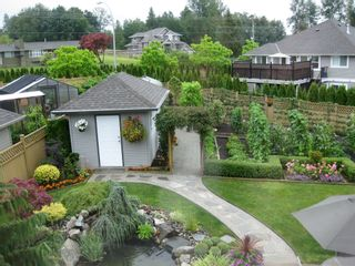 Photo 40: 27982 Buffer Crescent in Abbotsford: House for sale