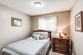 Photo 23: 173 Martinglen Way NE in Calgary: Martindale Detached for sale : MLS®# A1144697